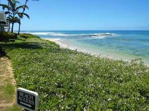 Poipu Beach East