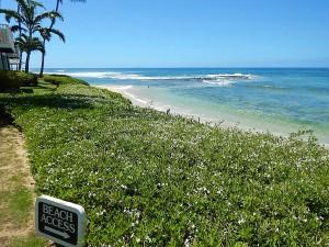 Poipu Beach East