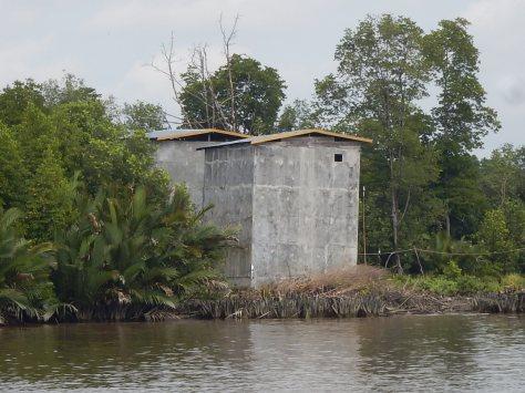 Bird nest collection house