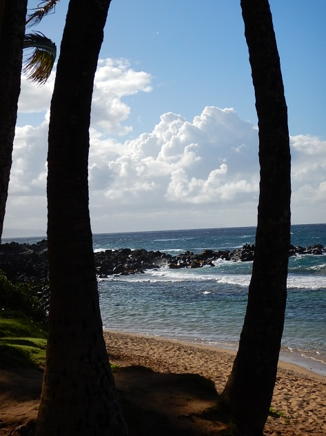 Looking out over the Pacific Ocean on Maui